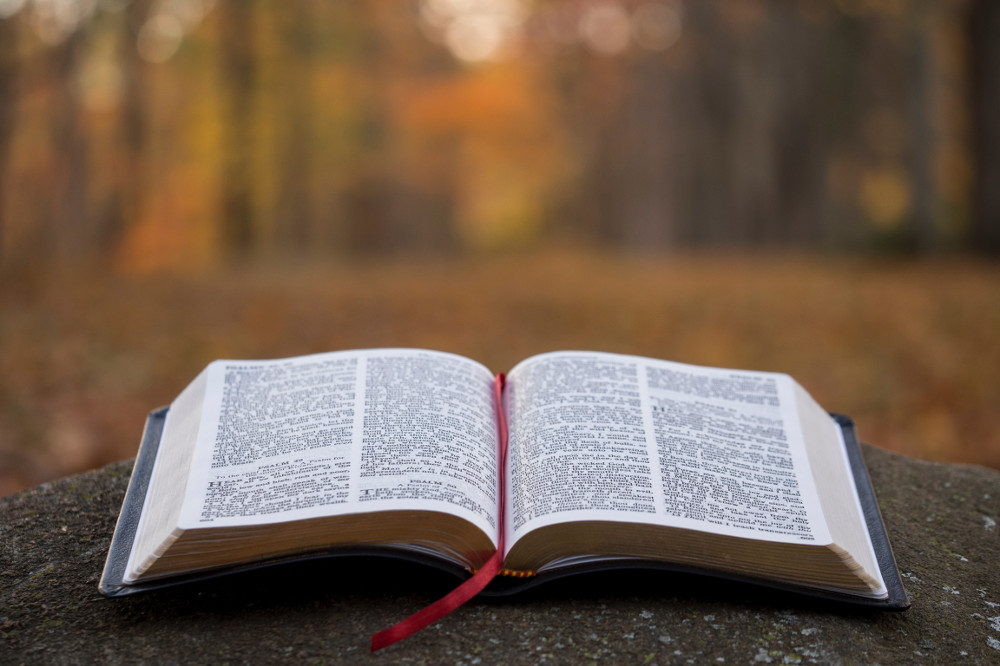 """""""W zasięgu Słowa"""" – komentarz na Niedzielę Zmartwychwstania Pańskiego"""