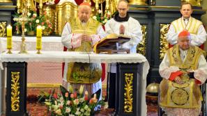 Odpust św. Józefa w diecezjalnym sanktuarium