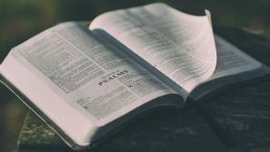 Czas przeczytać Biblię (i powiem ci, jak to zrobić!)
