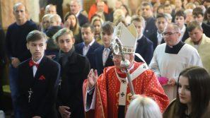 Kościół potrzebuje Waszego świadectwa! Bierzmowanie w Tenczynku