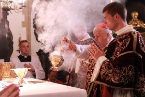 Kard. Dziwisz we wspomnienie św. Stanisława BM: To dobry pasterz na wzór samego Chrystusa.