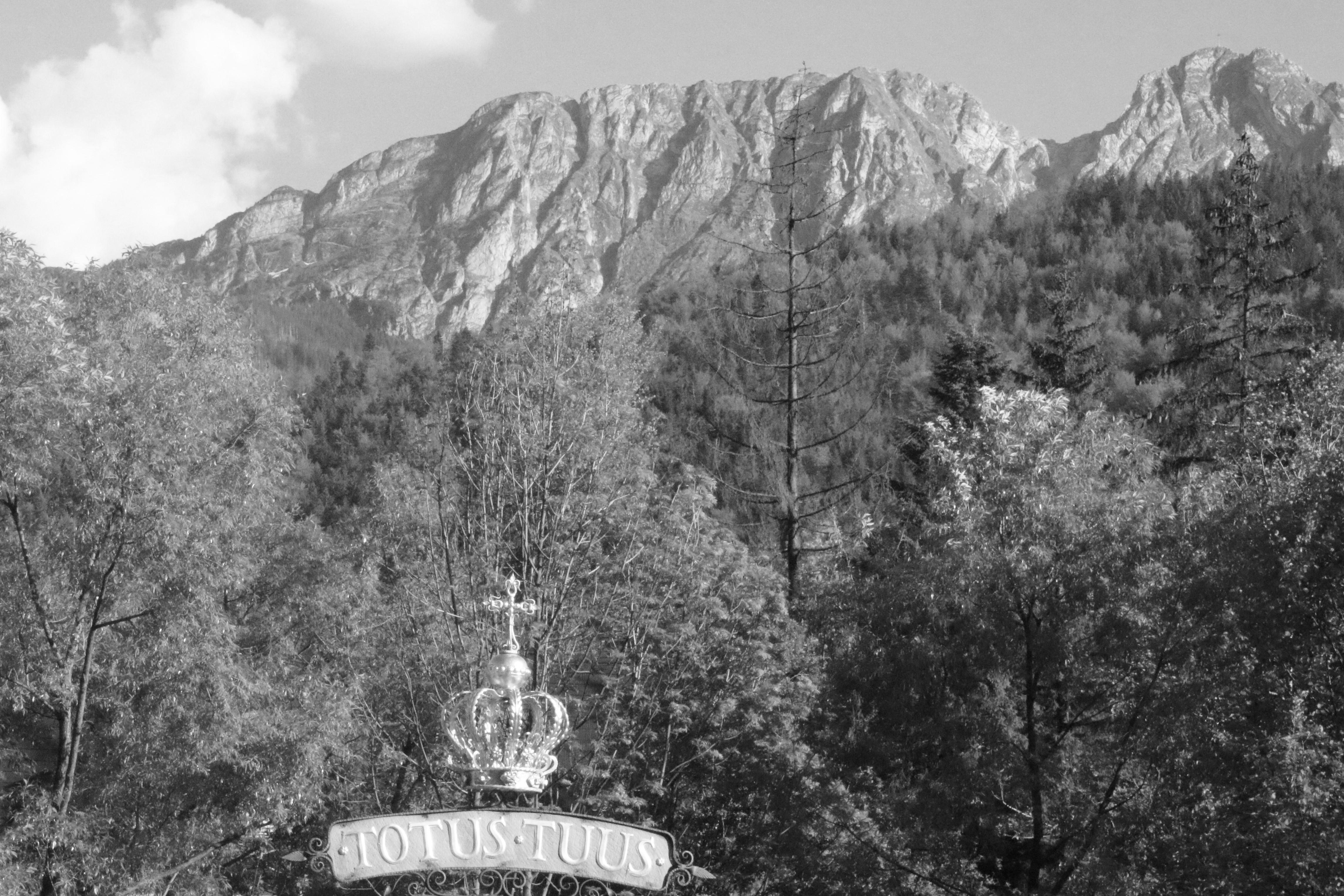Abp Jędraszewski: Módlmy się za ofiary tragedii w Tatrach