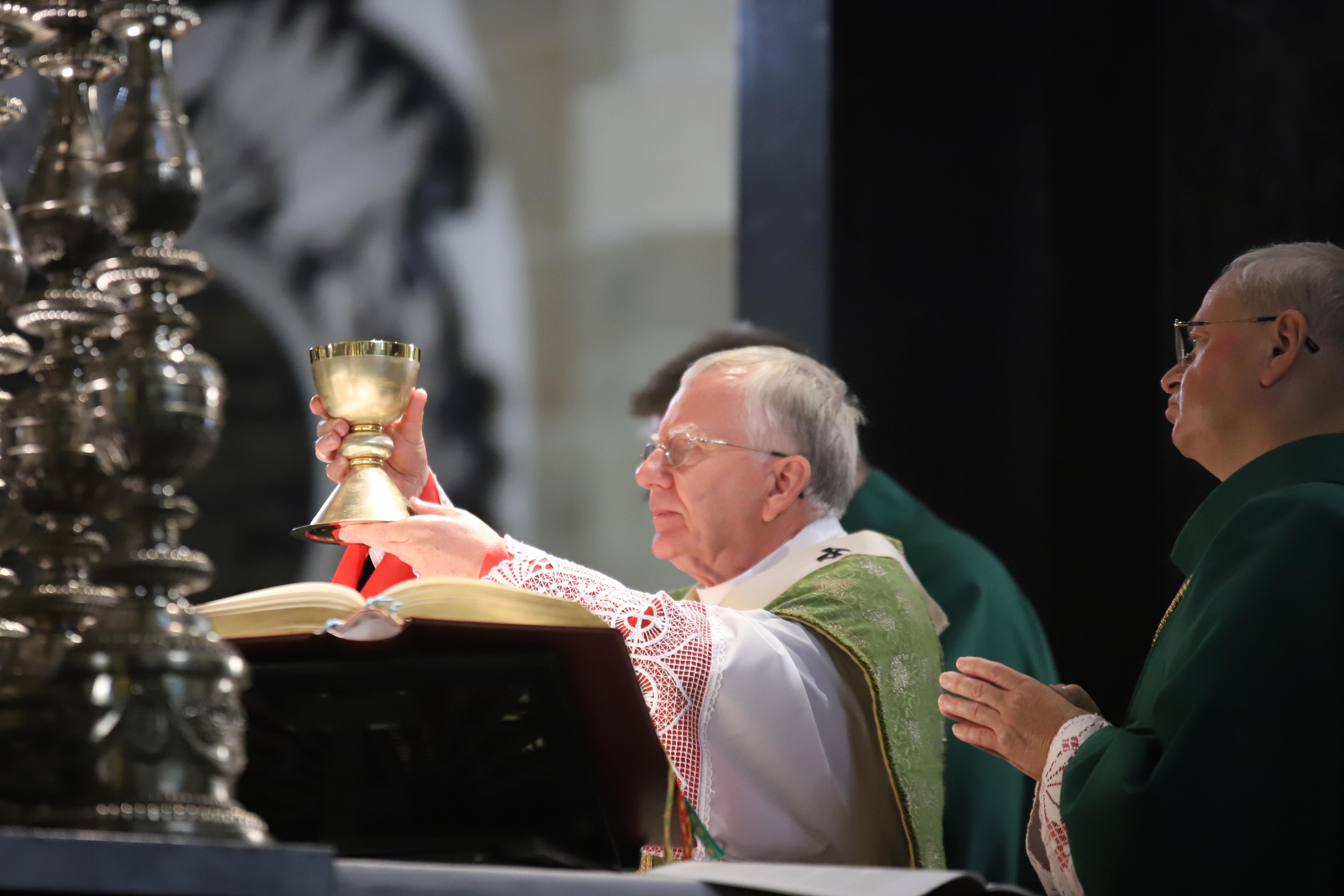 Kardynał Franciszek żył tajemnicą Bożego Miłosierdzia