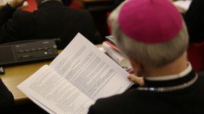 Komunikat z 384. Zebrania Plenarnego KEP: Zaktualizowane zasady formacji kapłańskiej i decyzja o powołaniu Fundacji Świętego Józefa