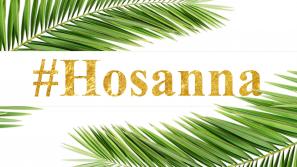 Akcja #Hosanna – Wyślij nam zdjęcie z palmą. Przekażemy je medykom