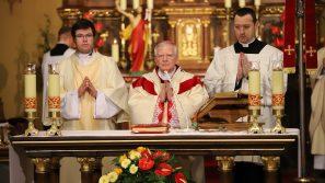 Abp Marek Jędraszewski w niedziele rozpoczynającą Tydzień Biblijny: Jesteśmy świadkami ukrzyżowanego i zmartwychwstałego Chrystusa