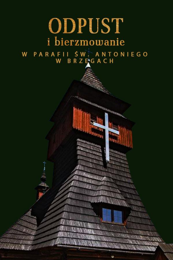 Odpust w parafii św. Antoniego w Brzegach