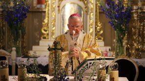 Abp Marek Jędraszewski w Sance: należy powracać do świadków wiary